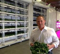 Indoor farm taps technology to grow leafy greens | Aquaponics~Aquaculture~Fish~Food | Scoop.it