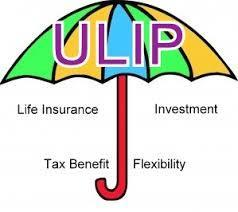 What is a Unit Linked Insurance Plan (ULIP) | Certified Financial Planner | Scoop.it