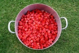 How To Make And Bottle Your Own Tomato Sauce   Mum's Business   tomatoes   Scoop.it