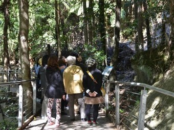 China Ready – Q&A with Australia's Scenic World on attracting Chinese travellers | The Vacation & Trip Destination Ideas Round-up | Scoop.it