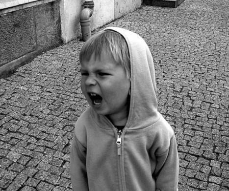 Child Psychology: When A Temper Tantrum Is Just A Temper Tantrum | C.E project | Scoop.it