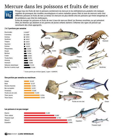 Infographie : Comment manger du mercure sans s'intoxiquer de poisson ? | Economie Responsable et Consommation Collaborative | Scoop.it