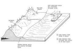 Shoreline Engineering | Coastal Care | Geography Insights | Scoop.it