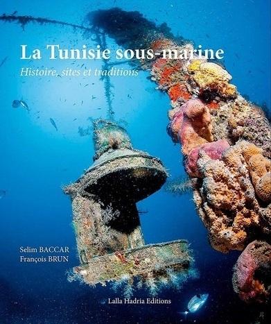 La Tunisie sous-marine sous l'objectif de Selim Baccar et François ... - Economiste Maghrébin   photo sous-marine   Scoop.it
