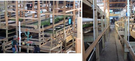 Comment reconvertir son usine en ferme écologique ? | Alter-Echos | Friches industrielles, brownfields | Scoop.it