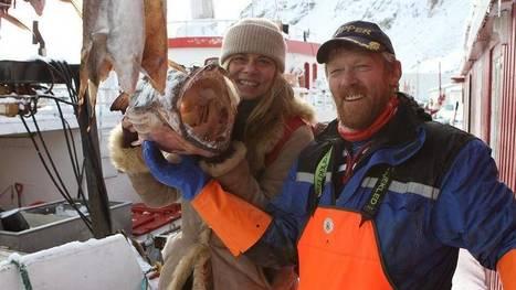 Le cabillaud des îles Lofoten / Les coups de coeur de Sarah Wiener  | à 19H ARTE | Arctique et Antarctique | Scoop.it