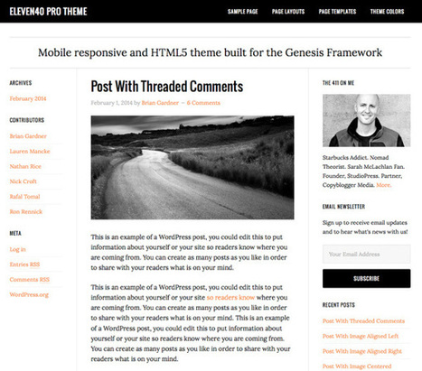 6 Best SEO Friendly WordPress Themes 2014 - Passive Blog Tips | SEO? What's That? | Scoop.it