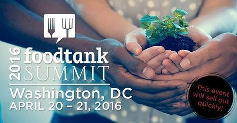 Food Tank Summit 2016 Live Stream - LETumEAT | Entomophagy: Edible Insects and the Future of Food | Scoop.it