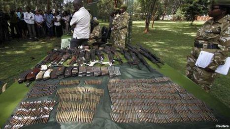 Kenyan Anti-Poaching Laws May Get Overhaul   Wildlife Trafficking: Who Does it? Allows it?   Scoop.it