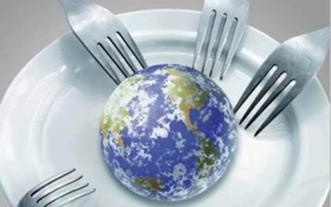 Alimentation du futur : la technologie pour la sécurité alimentaire - Agro Media | Actualité de l'Industrie Agroalimentaire | agro-media.fr | Scoop.it