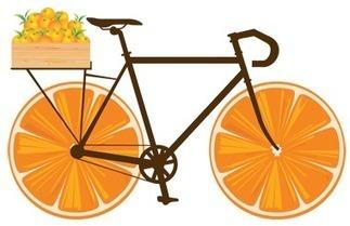 Orange Blossom Express Bike Tour Bring 900 Bicyclists to Polk ... | Cyclosport | Scoop.it