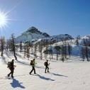 13 Gennaio 2013 Ciaspolata fotografica Parco del Monte Avic - Photofarm | Duathlon Off Road | Scoop.it