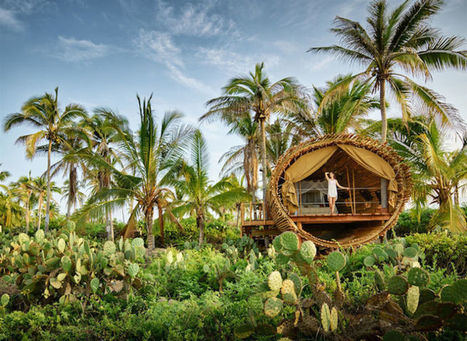 Destination de rêve : au Mexique, une cabane écolo en bambou au bord de la mer | Ecotourisme - Voyager autrement | Scoop.it
