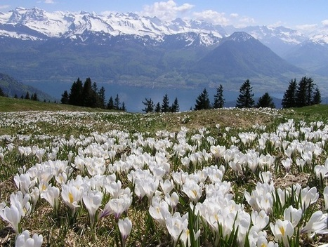 Switzerland - Best countries to live in the countryside | Cool stuff from Switzerland | Scoop.it