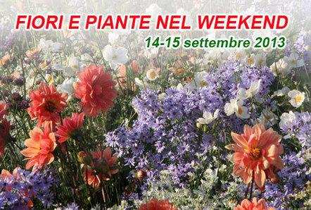 14-15 settembre: fiori e piante nel weekend | Fiori & Foglie | About gardening | Scoop.it