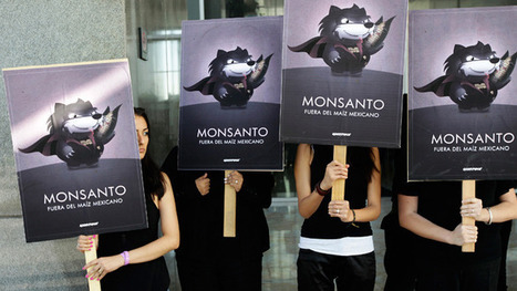 'Monsanto Protection Act' to be voted on by Congress | Plant Based Transitions | Scoop.it