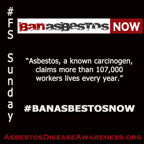 ADAO: Taking Education to the Digital Streets every Sunday for #BanAsbestosNow Action | Asbestos and Mesothelioma World News | Scoop.it