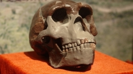 How China Is Rewriting the Book on Human Origins   critical reasoning   Scoop.it