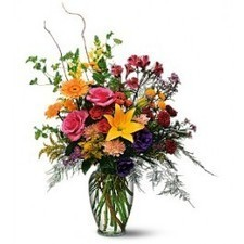 With this rather exceptional arrangement of bright red, yellow and purple flowers, you can show that special someone just how much they really count. | buffalo florist | Scoop.it