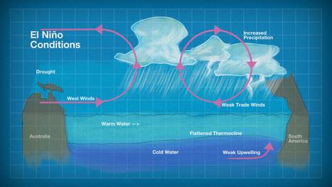 Breaking the Destructive Cycle: Understanding El Niño   science   Scoop.it