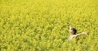 Les quatre fondements du bien-être autravail | ManonetEuzhan | Scoop.it