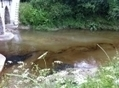 La mairie de Blandy porte plainte contre la société Vermillon pour la pollution d'une rivière en Seine-et-Marne   Toxique, soyons vigilant !   Scoop.it