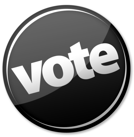"NOMblog: SMOnline: ""Many African-Americans Voting Against Same-Sex Marriage"" | Black People News | Scoop.it"