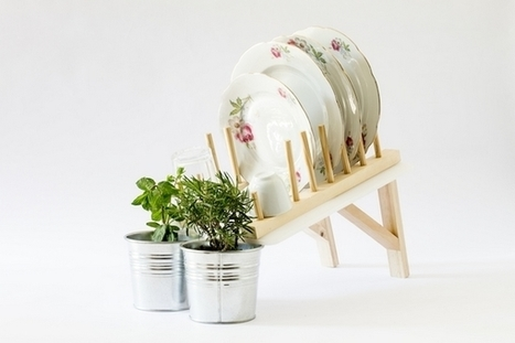 Scolapiata : récupérer l'eau de la vaisselle pour faire pousser des plantes | Innovations urbaines | Scoop.it