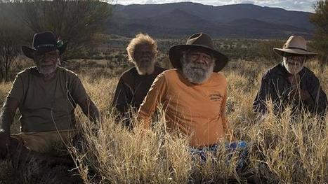 Caterpillar dreaming artist emerges as Red Ochre winner - The Australian | Interqctive Whiteboards | Scoop.it
