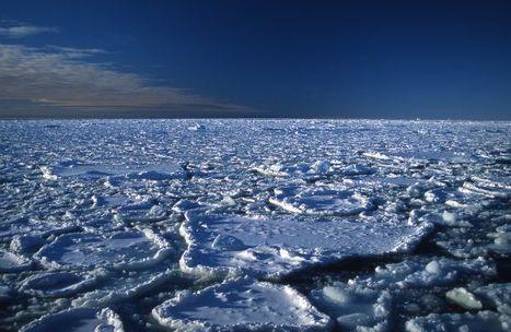 El deshielo ártico destroza su récord | Communication for Development | Scoop.it