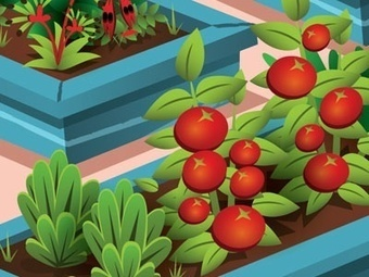 Urban and peri-urban agriculture and forestry as a strategy for climate change adaptation and mitigation — City Farmer News | Vertical Farm - Food Factory | Scoop.it