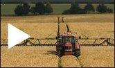 Genetically Modified Cotton   Year 10 Biology - Genetics   Scoop.it