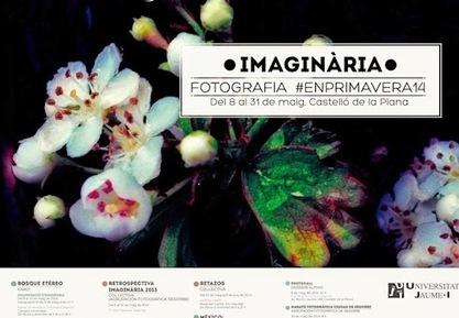 100 Bosques | Recursos de Botánica para Secundaria | Scoop.it
