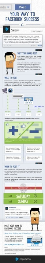 Post Your Way To Facebook Success | Business Industry Infographics | Scoop.it