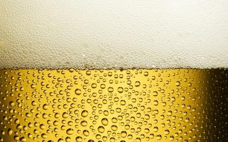 Le bollicine della birra ci salvano dai grassi   Benessere, Beauty & Make-Up   Scoop.it
