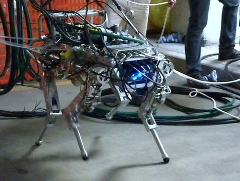Italian quadruped robot goes for a walk | KurzweilAI | Cyborg Lives | Scoop.it