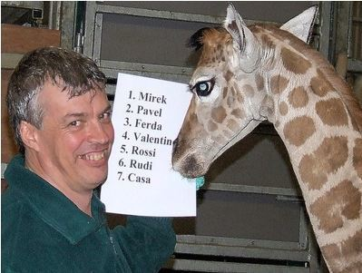 ThisIsSouthDevonUK | Vote for a name for a baby giraffe | Let's name it ROSSI! | Ductalk Ducati News | Scoop.it