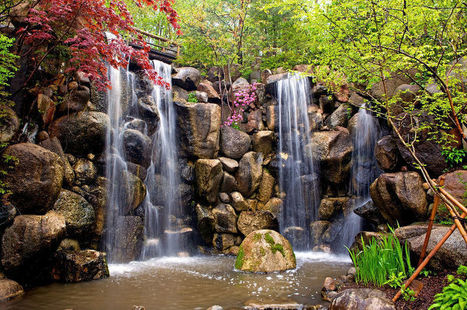 Anderson Japanese Gardens - Rockford, Illinois - Site For Everything | Japanese Gardens | Scoop.it