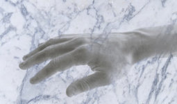 New bodily illusion: Would you believe your hand could turn into marble? | The brain and illusions | Scoop.it