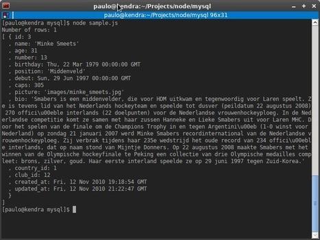 Accediendo a MySQL con node.js - blog - realnorth   Material para la exposición de INF-272   Scoop.it