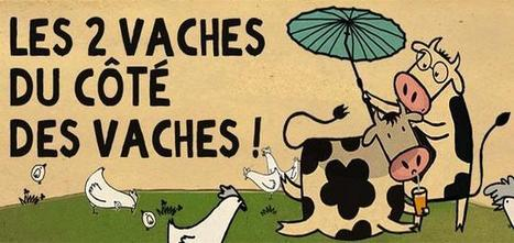 Les Bêtises et Les Vaches: Two French Brands Use Humor To Engage Consumers in Sustainability | Resources about Corporate Social Responsibility | Scoop.it