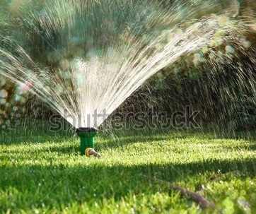Important tips to get a lush green lawn | Lawn Turf Suppliers | Scoop.it