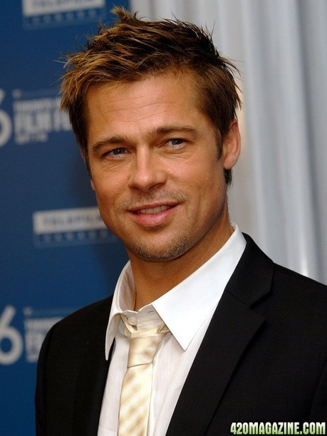 Brad Pitt Blasts U.S. 'War On Drugs,' Calls For Policy Rethink | Police Problems and Policy | Scoop.it