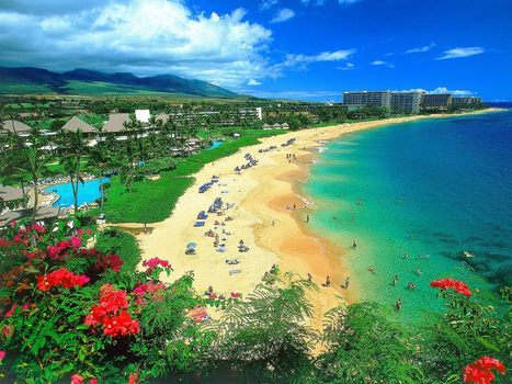 Waikiki and Maui vacation package From $689 | Daugherty Hawaii | Scoop.it