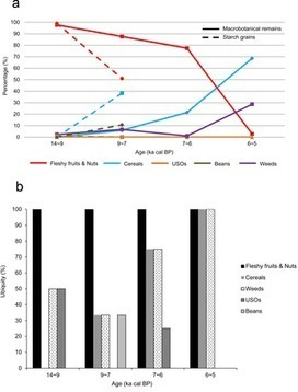 Macro-Process of Past Plant Subsistence from the Upper Paleolithic to Middle Neolithic in China: A Quantitative Analysis of Multi-Archaeobotanical Data | plant cell genetics | Scoop.it