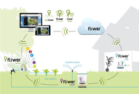 Fliwer, la tecnología al servicio de tus plantas | Desarrollo de Apps, Softwares & Gadgets: | Scoop.it