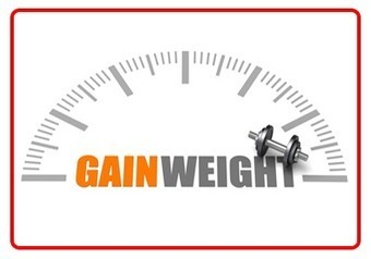 Weight Gain Diet Plan | Just for Hearts | SEO Strategies after Humingbird update | Scoop.it