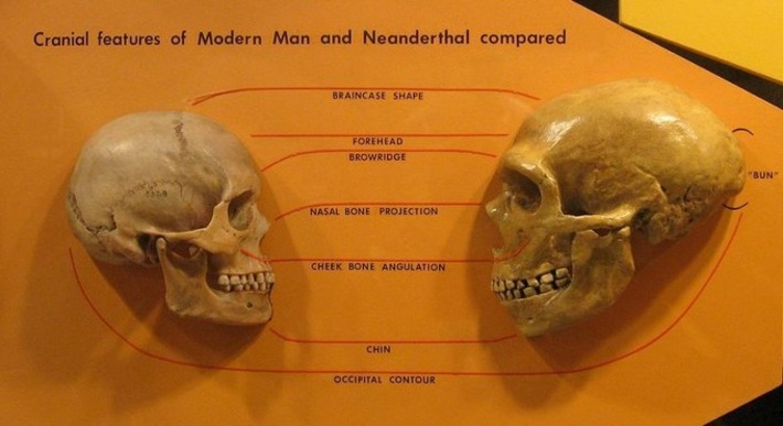 Why — and When — Did Early Humans Leave Africa? | Pacific Standard | Kiosque du monde : A la une | Scoop.it