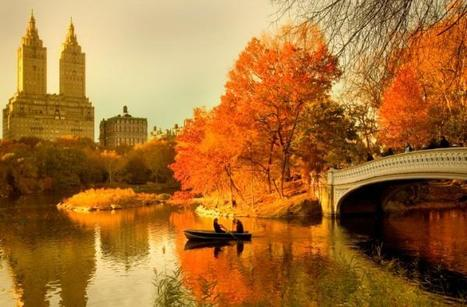 Cultural Events in New York to Entertain You This Fall | Best Urban Art | Scoop.it