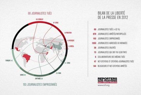 2012 : Hécatombe pour les acteurs de l'information | science de l'info | Scoop.it